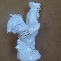 Porcelianinis gaidys M