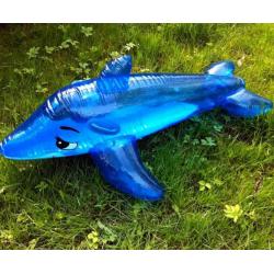 Pripučiamas delfinas