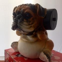 Šuo taupyklė Sportininkas 1