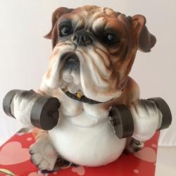 Šuo taupyklė Sportininkas 4
