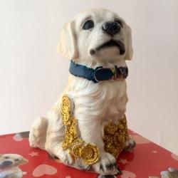 Šuo taupyklė M