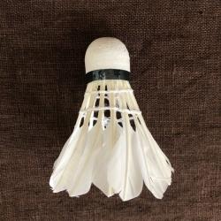 Badmintono muselė